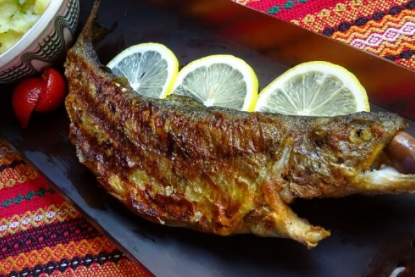 Grilled trout with Chimichurri sauce